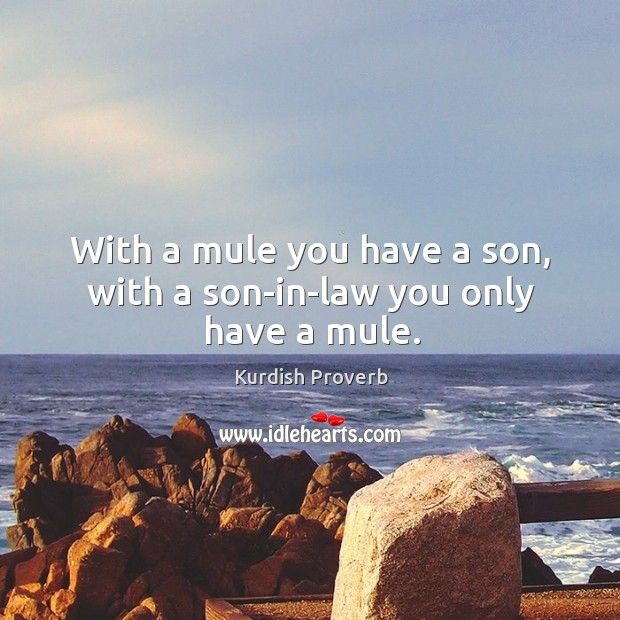 With a mule you have a son, with a son-in-law you only have a mule. Kurdish Proverbs Image