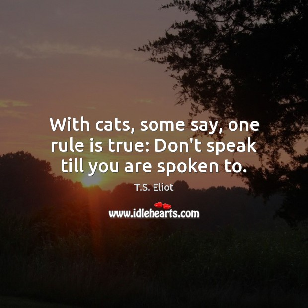 With cats, some say, one rule is true: Don't speak till you are spoken to. T.S. Eliot Picture Quote