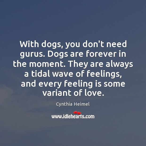 Image, With dogs, you don't need gurus. Dogs are forever in the moment.