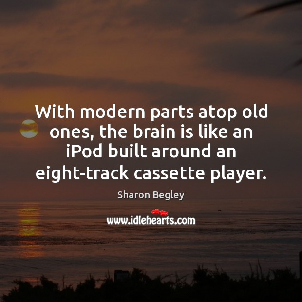 With modern parts atop old ones, the brain is like an iPod Image