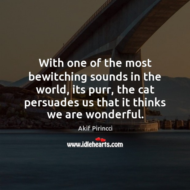 Image, With one of the most bewitching sounds in the world, its purr,