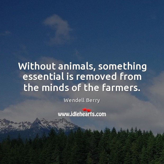 Without animals, something essential is removed from the minds of the farmers. Wendell Berry Picture Quote