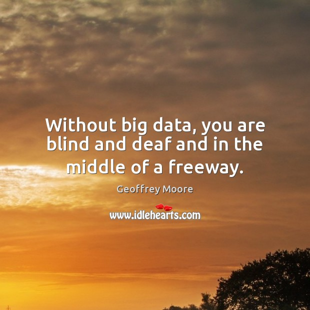 Image, Without big data, you are blind and deaf and in the middle of a freeway.