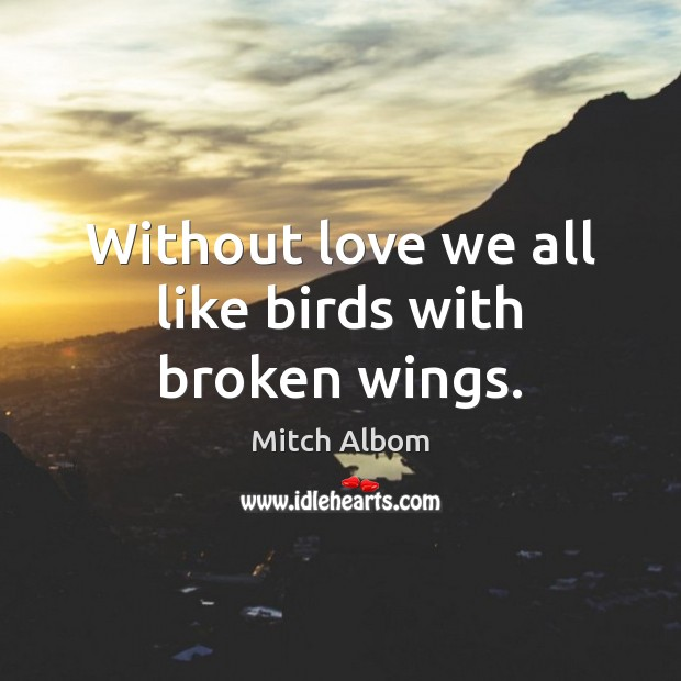 Without love we all like birds with broken wings. Mitch Albom Picture Quote