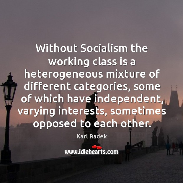 Without socialism the working class is a heterogeneous mixture of different categories Karl Radek Picture Quote