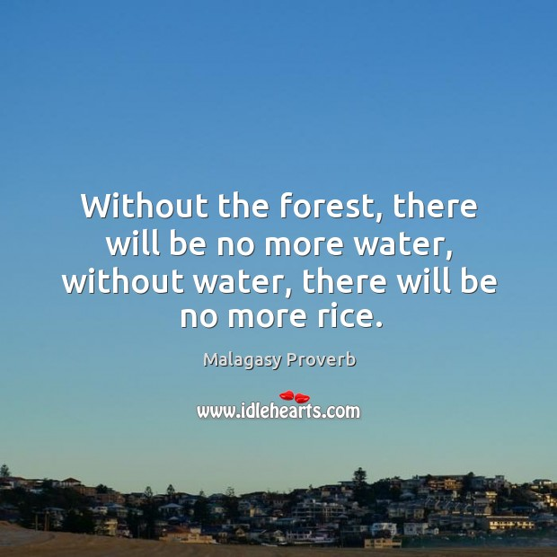 Image, Without the forest, there will be no more water