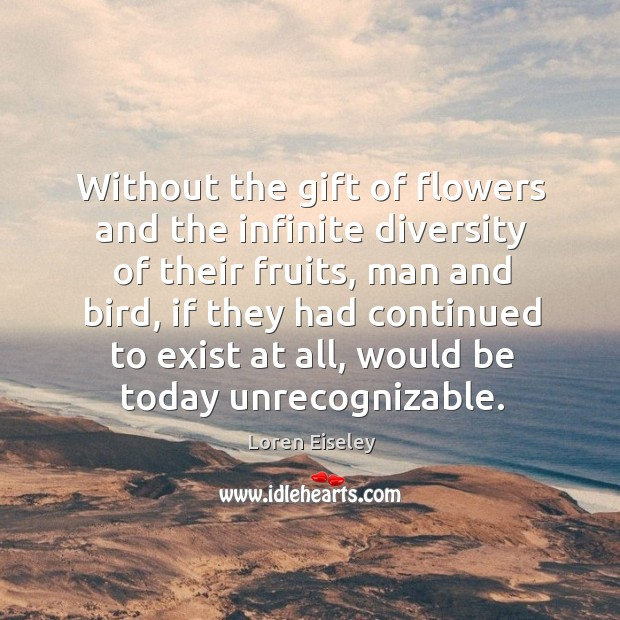 Without the gift of flowers and the infinite diversity of their fruits, Loren Eiseley Picture Quote