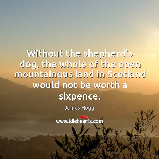 Without the shepherd's dog, the whole of the open mountainous land in scotland would not be worth a sixpence. Image