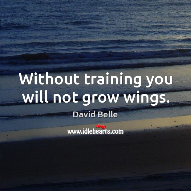 Without training you will not grow wings. Image
