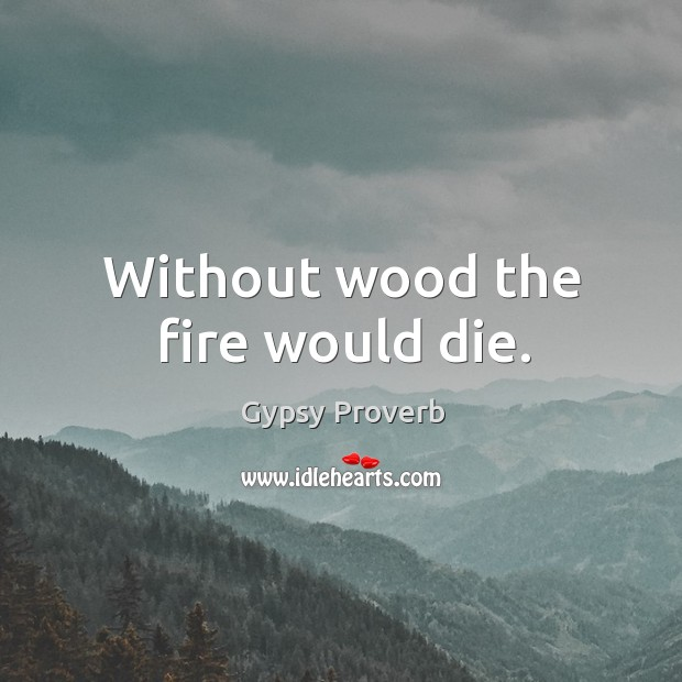 Without wood the fire would die. Gypsy Proverbs Image