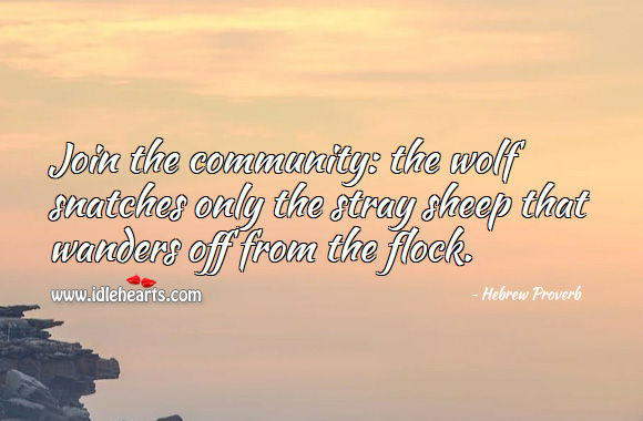 Image, Join the community: the wolf snatches only the stray sheep that wanders off from the flock.