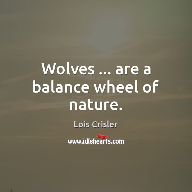 Wolves … are a balance wheel of nature. Image