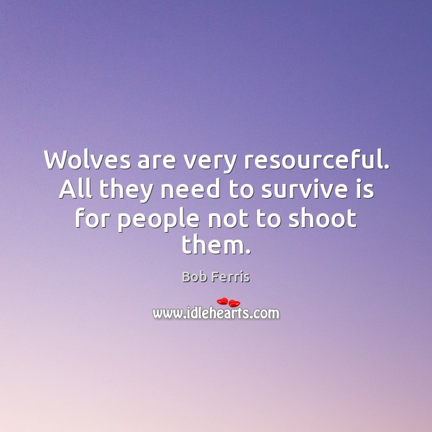Image, Wolves are very resourceful. All they need to survive is for people not to shoot them.