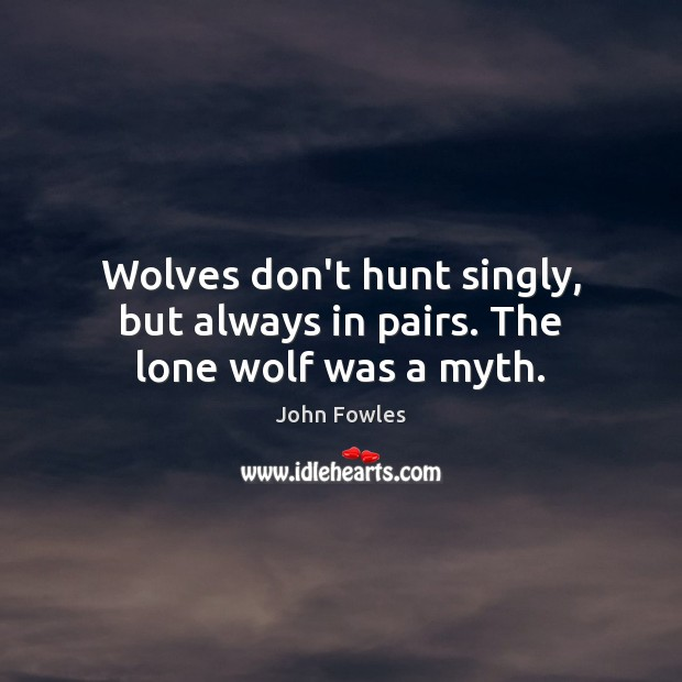 Wolves don't hunt singly, but always in pairs. The lone wolf was a myth. John Fowles Picture Quote