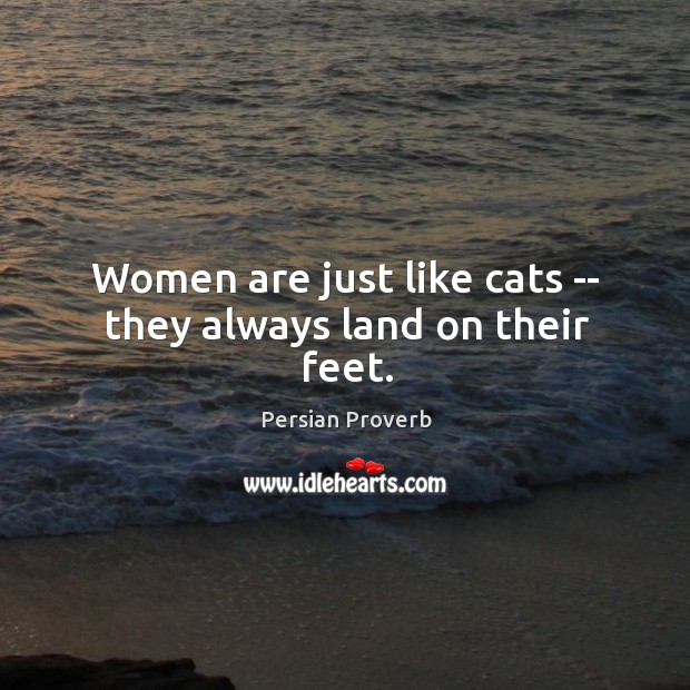 Women are just like cats — they always land on their feet. Persian Proverbs Image