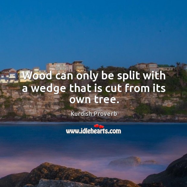 Wood can only be split with a wedge that is cut from its own tree. Kurdish Proverbs Image