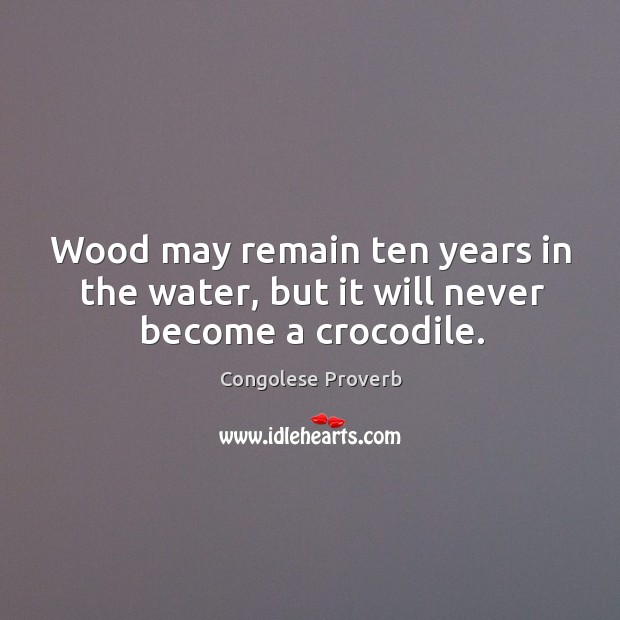 Wood may remain ten years in the water, but it will never become a crocodile. Congolese Proverbs Image