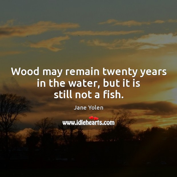 Wood may remain twenty years in the water, but it is still not a fish. Image