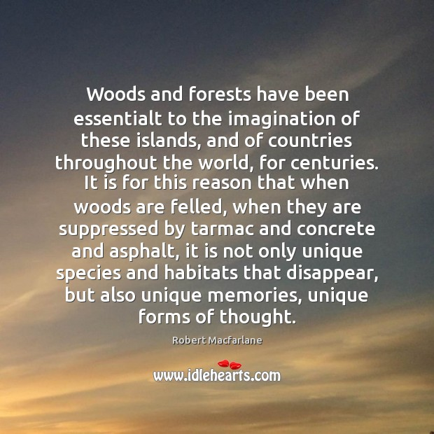 Woods and forests have been essentialt to the imagination of these islands, Robert Macfarlane Picture Quote