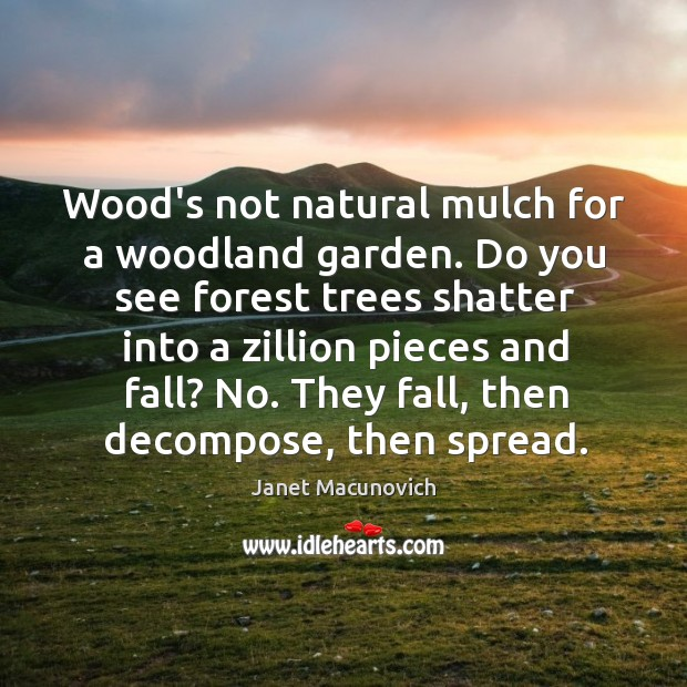 Wood's not natural mulch for a woodland garden. Do you see forest Janet Macunovich Picture Quote