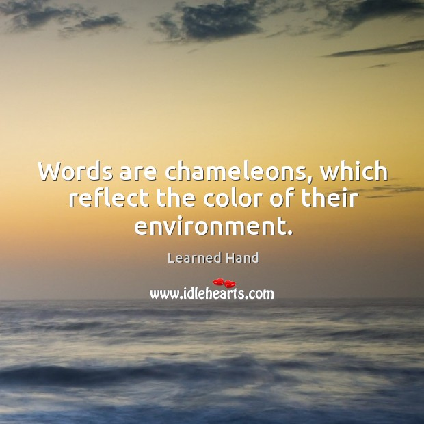 Image, Words are chameleons, which reflect the color of their environment.