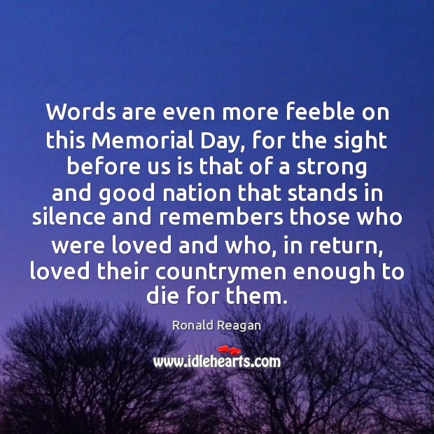 Words are even more feeble on this Memorial Day, for the sight Image