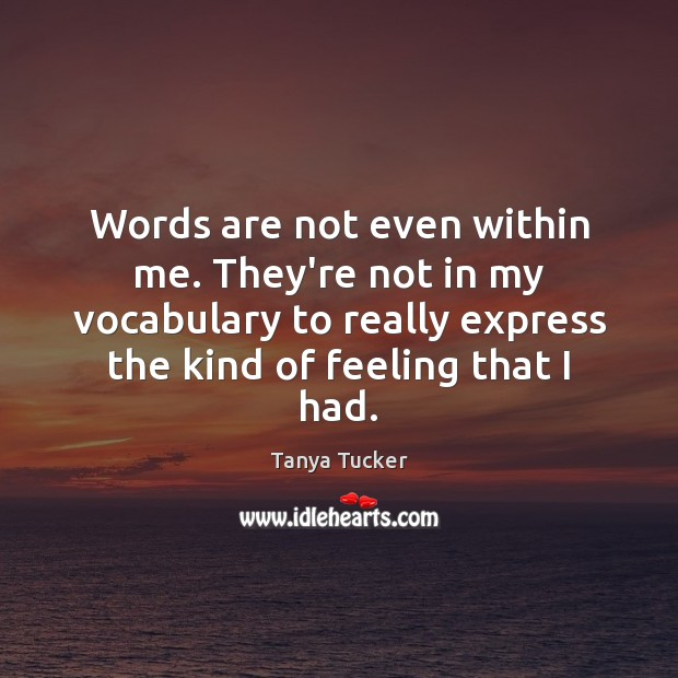 Words are not even within me. They're not in my vocabulary to Image