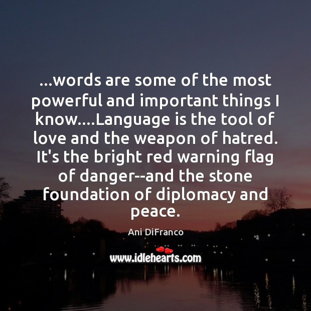 …words are some of the most powerful and important things I know…. Ani DiFranco Picture Quote