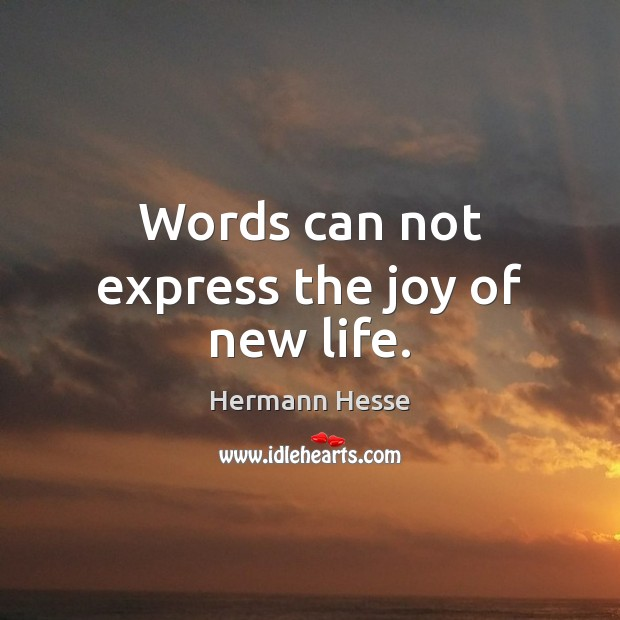 Words can not express the joy of new life. Hermann Hesse Picture Quote
