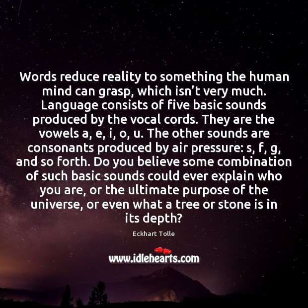 Words reduce reality to something the human mind can grasp, which isn' Eckhart Tolle Picture Quote