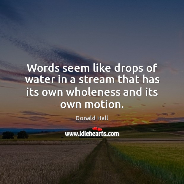 Words seem like drops of water in a stream that has its own wholeness and its own motion. Image