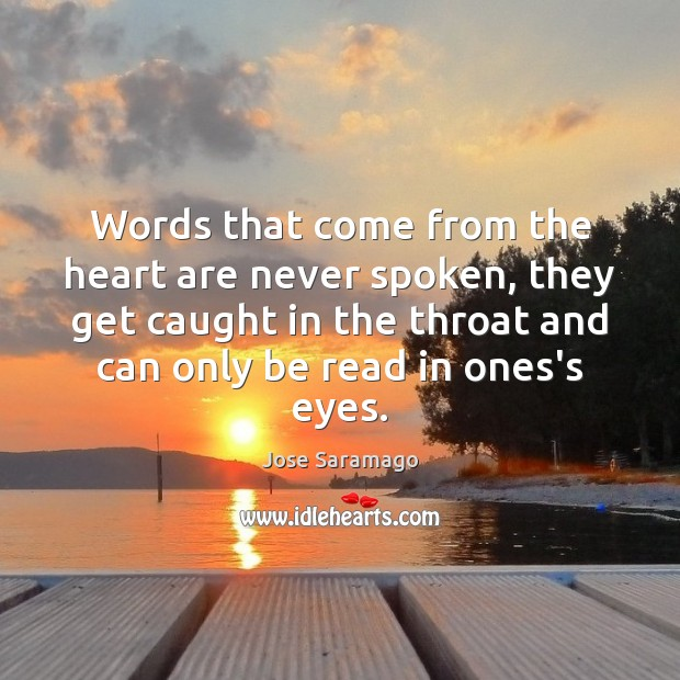 Words that come from the heart are never spoken, they get caught Image