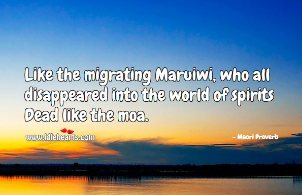 Like the migrating maruiwi, who all disappeared into the world of spirits dead like the moa. Maori Proverbs Image