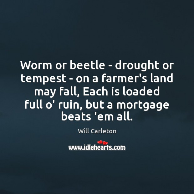 Image, Worm or beetle – drought or tempest – on a farmer's land