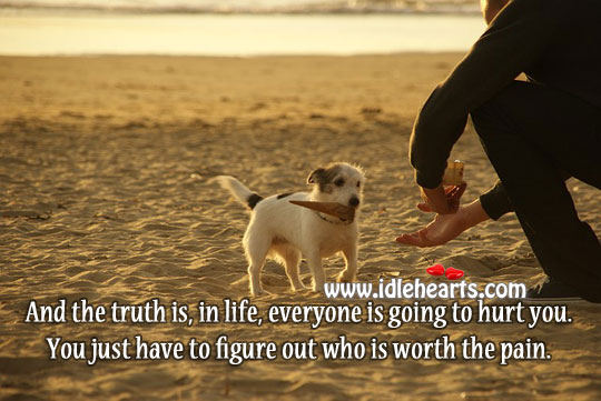 The Truth Is, In Life, Everyone Is Going To Hurt You.