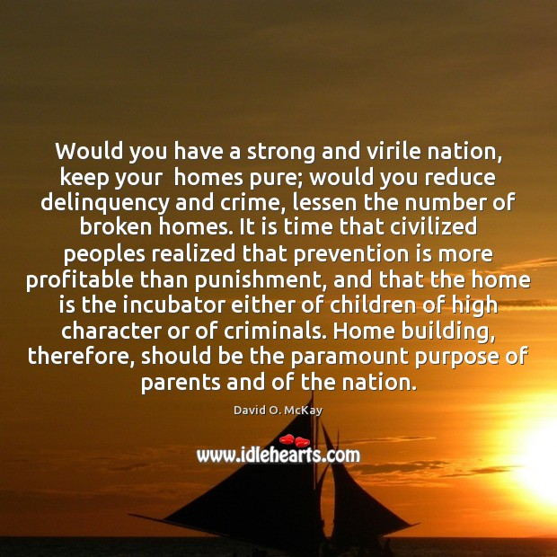 Would you have a strong and virile nation, keep your  homes pure; David O. McKay Picture Quote