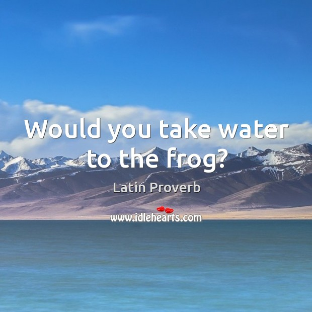 Would you take water to the frog? Image
