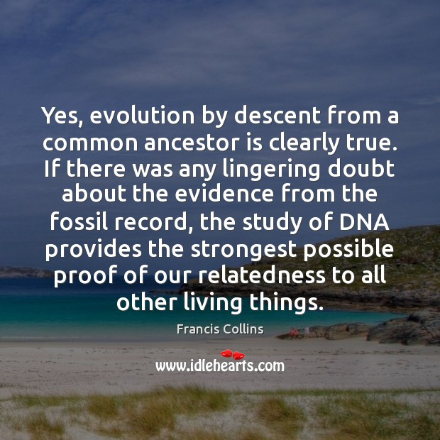 Yes, evolution by descent from a common ancestor is clearly true. If Francis Collins Picture Quote
