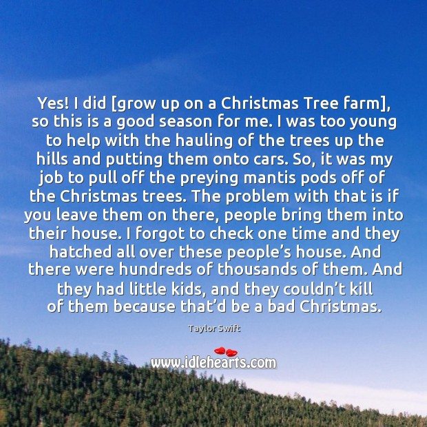 Yes! I did [grow up on a Christmas Tree farm], so this Image