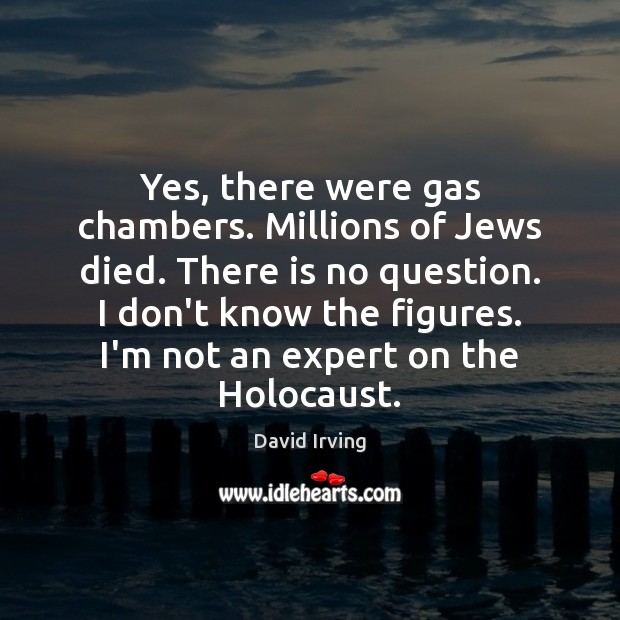 Image, Yes, there were gas chambers. Millions of Jews died. There is no