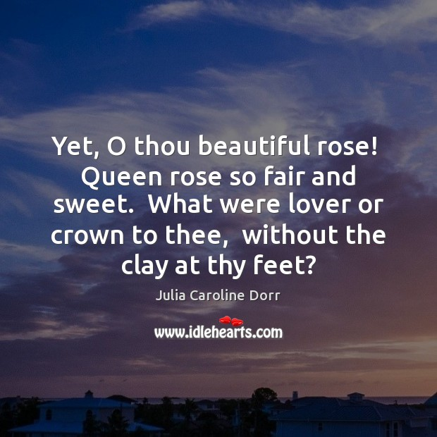 Image, Yet, O thou beautiful rose!  Queen rose so fair and sweet.  What