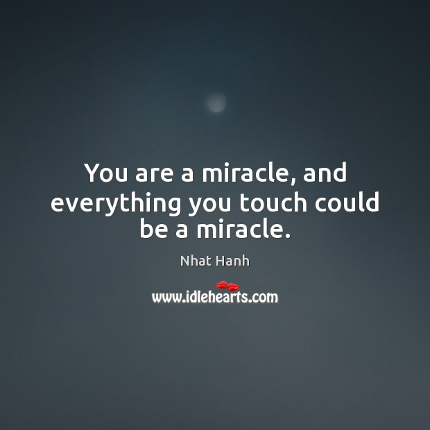 Image, You are a miracle, and everything you touch could be a miracle.