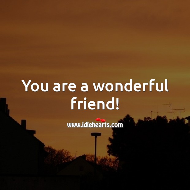 You are a wonderful friend! Friendship Messages Image