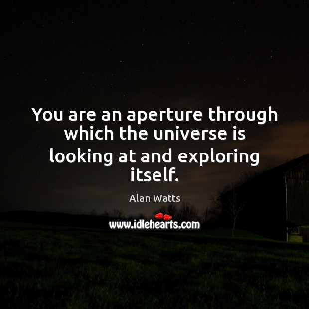 You are an aperture through which the universe is looking at and exploring itself. Image