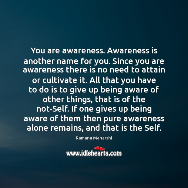 You are awareness. Awareness is another name for you. Since you are Image