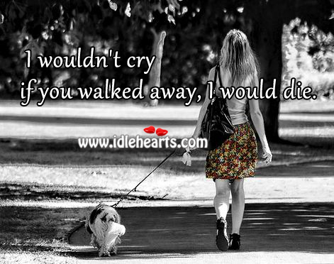 I wouldn't cry if you walked away, I would die.