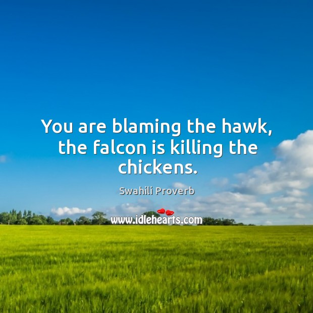 Image, You are blaming the hawk, the falcon is killing the chickens.
