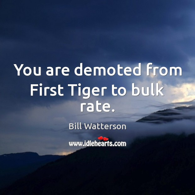You are demoted from First Tiger to bulk rate. Bill Watterson Picture Quote