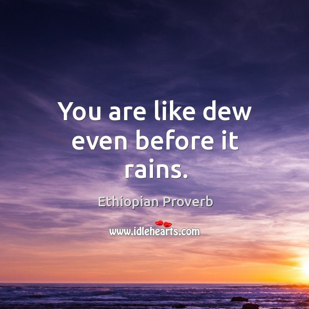You are like dew even before it rains. Ethiopian Proverbs Image