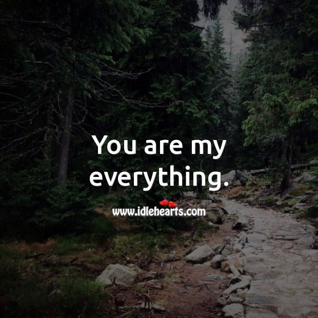 You are my everything. Romantic Messages Image